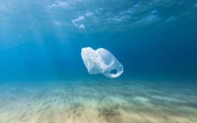 (Re)vivons dans un monde sans plastique !